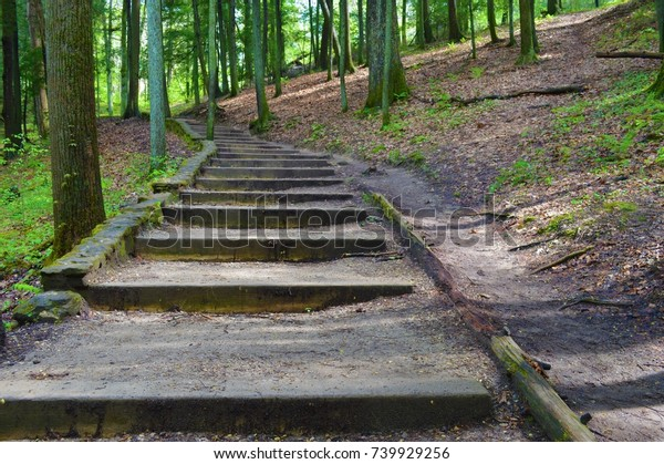 """Natural Stairs Taken from one of the many trails in Hocking Hills. This was supposed to be a """"shortcut"""" to the Devil's Bathtub."""