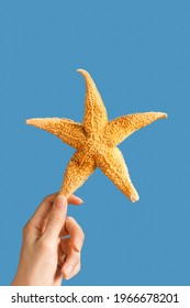 Natural starfish in hands of woman, summer vacation, beach relax concept. Bright summer background with seastar on sea blue colors.