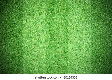 Natural strip grass texture patterned background