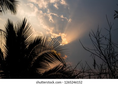 Natural of sunset sunrise for bright dramatic cloud sky with coconut trees. Landscape of countryside scenic colorful on sun skyline. Views of nuture concept