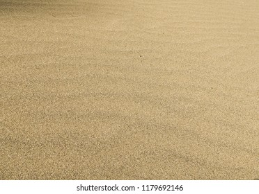 Natural texture - yellow sand on the lake shore