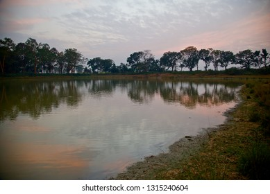 Natural trees with reflection in water of a lake in the afternoon