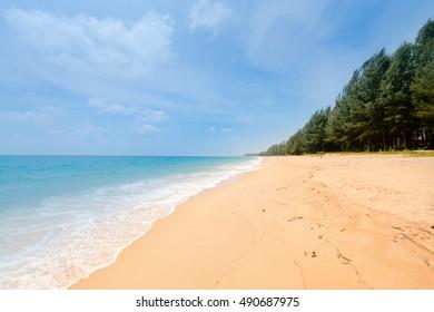 Natural tropical sandy beach and calm sea landscape with trees and blue sky background. Mai Khao beach on Phuket island, Thailand.