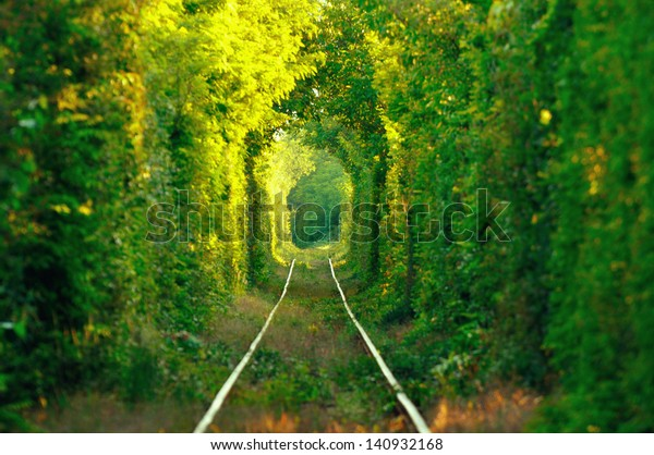 natural-tunnel-love-formed-by-600w-14093
