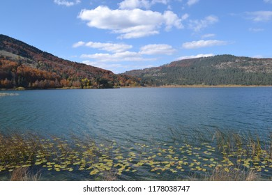 A natural view in Abant Lake , Bolu