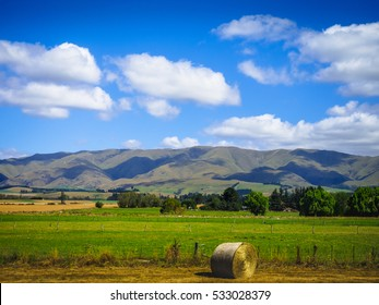 Natural View of Grassland with Mountains and White Clouds in New Zealand