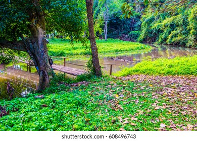 Natural view at Phu Sang waterfall, Thailand.