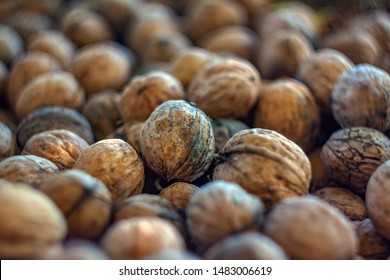 Natural walnut background pattern texture Abstract walnuts heap pattern background Blurred edges frame Natural food in-shell nuts walnuts pattern backdrop Walnuts in shell background dramatic co