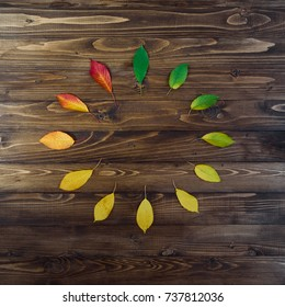 Natural watch from autumn leaves. Clock concept. Autumn leaves transition from green to red on wooden background. Concept change of season.