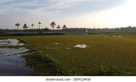 Natural waters and countryside in Kerala