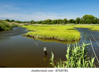 Natural wetlands