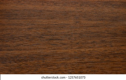 Natural wood cut. Background, texture. Close-up.