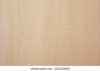 Natural wood light color texture background. Wood texture with natural pattern. Natural light color wood texture.