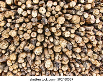 Natural wooden background of firewoods close-up stacked in the woodpile.Rural landscape.
