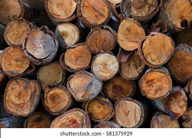 Natural wooden logs cut and stacked in pile, felled by the logging timber industry, Abstract photo of a pile of natural wooden logs background
