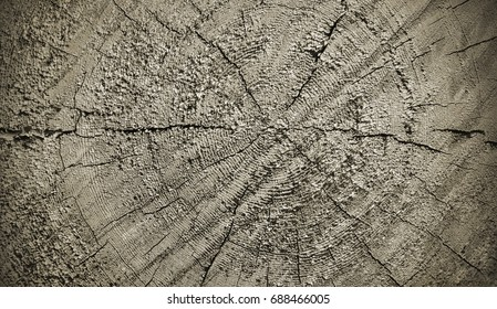 Natural wooden texture with rings and cracks pattern, closeup, vintage effect