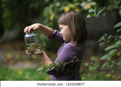 Naturalist Child girl holding a jar with a frog, concept of childhood and exploration, interest in the environment