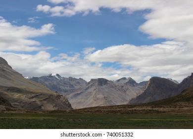 In nature - Shutterstock ID 740051332