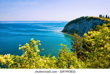 Nature and Adriatic sea in Strunjan National Park in Slovenia