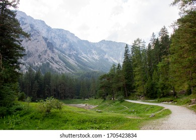 Nature around Gruner See, Hochswab Mountains, Austria