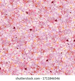it nature art and flowers background
