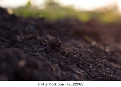 Nature background, pile of soil against green defocused grass with copy space