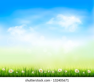 Nature background. Raster version of vector