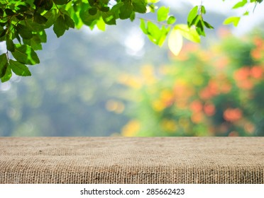 Nature Images, Pictures, Photos - Nature Photographs  Shutterstock
