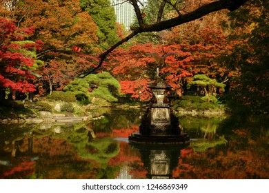 Nature background with view of traditional Japanese garden in Hibiya park in Tokyo, Japan, with trees, and water reflections in November.