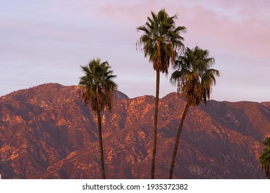 Nature background, wallpaper. Image taken from Pasadena showing the San Gabriel Mountains in the background.