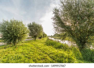 Nature between J. Keplerweg in Alphen aan den Rijn and Weteringpad with a view of the Wetering and young pollard willows on the bank and verges against the sky with light clouds