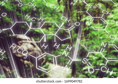 Nature blur background with ecology illustration