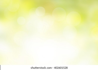 nature blur greenery bokeh leaf wallpaper; spring and autumn park background; Soft focus light on view leaves flare medical rays abstract pastel tree foliage forest landscape gradient white and yellow