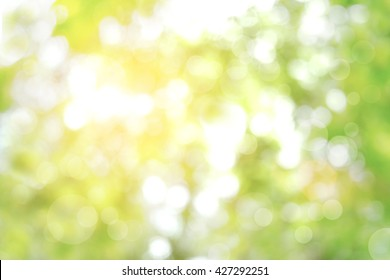 Park Background Images, Stock Photos & Vectors | Shutterstock