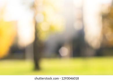 Nature bokeh background