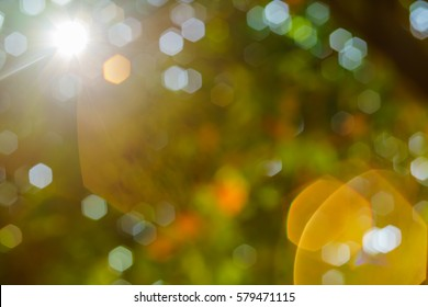 Nature bokeh background and a bright sun light flair.