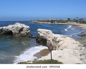 nature bridge on the beach
