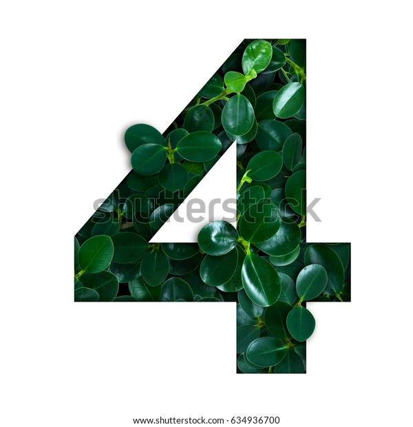 Nature concept alphabet of green leaves in number four shape