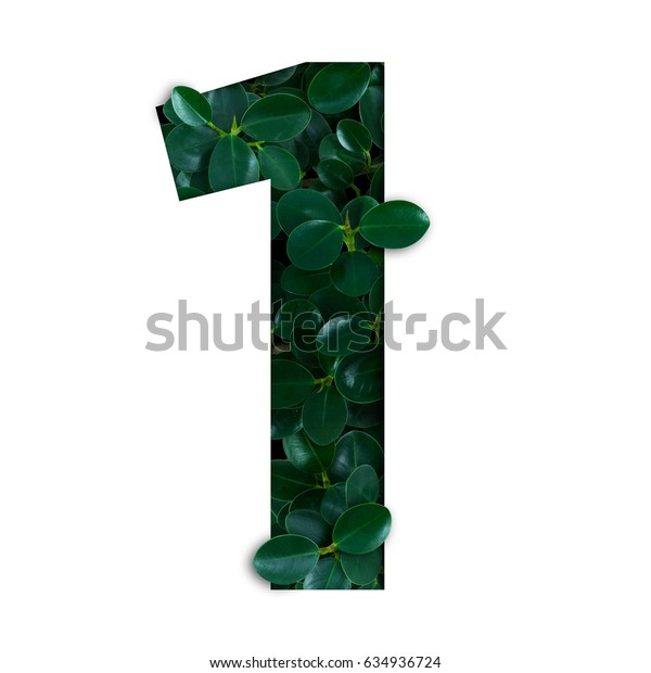 Nature concept alphabet of green leaves in number one shape
