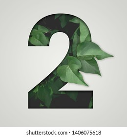 Nature concept. Creative number with green leaves on a gray background. Creative typography, Chapter in the presentation, template. 2 number two.