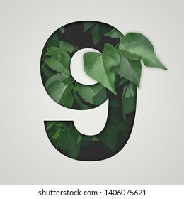 Nature concept. Creative number with green leaves on a gray background. Creative typography, Chapter in the presentation, template. 9 number nine.