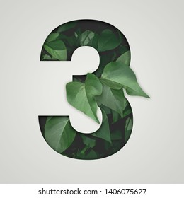 Nature concept. Creative number with green leaves on a gray background. Creative typography, Chapter in the presentation, template. 3 number three.