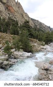 Nature (Corsica)