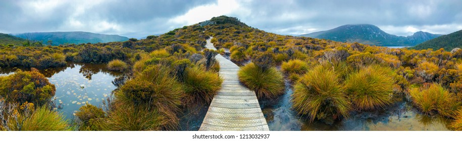 The Nature in Cradle Mountain–Lake St Clair National Park