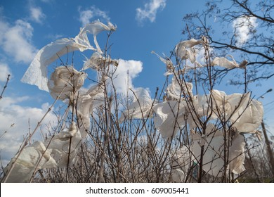 Nature and earth pollution. Trees covered with plastic bags over blue sky and a lot of plastic garbage on the earth.