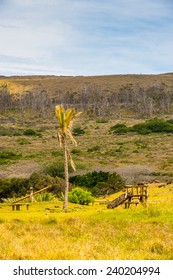 Nature of the Easter Island in Chile, South America