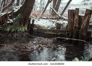 Nature, ecology, climate, danger, water, wood, metal, steel, problem, pain for the planet,recycling, wallpapers, material, sezon, winter, global warming,  - Shutterstock ID 1612038040