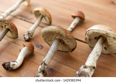 nature, environment and edible mushrooms concept - brown cap and orange-cap boletus on wooden background