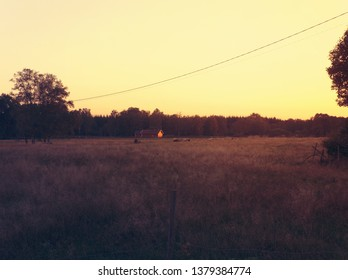 Nature in the Evening. Småland, Sweden.