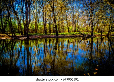 Nature Forest Preserve